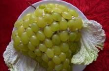 Salotos su vynuogėm